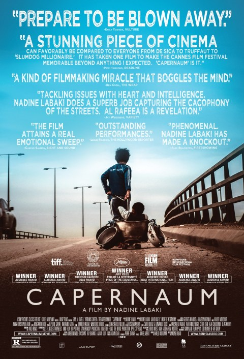 Capernaum 2018 ORG Hindi Dubbed WEB-DL 480p | 720p | 1080p