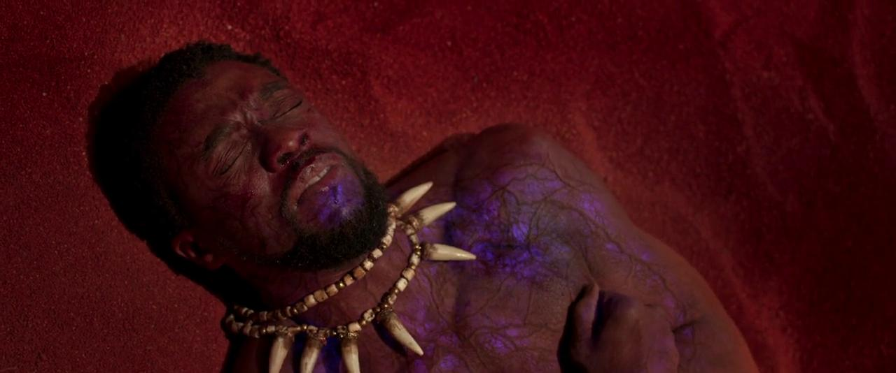 Black Panther (2018) / IMDB.com