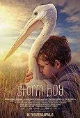 Image result for Storm Boy