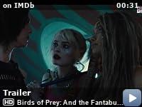 Harley Quinn: Birds of Prey (2020) 480p/720p Web-HD 12