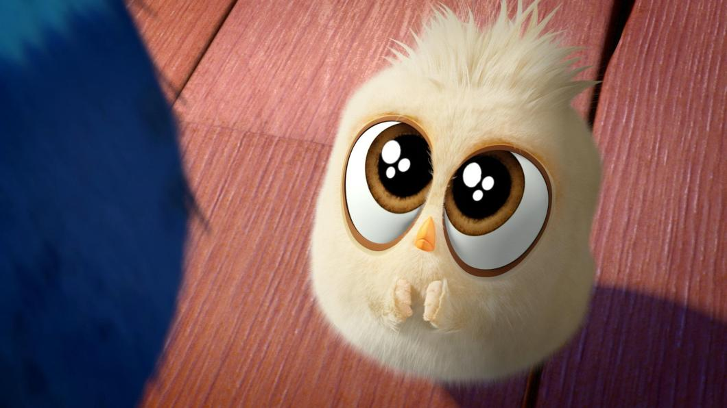 Cute Image Of Angry Birds | Walljdi org