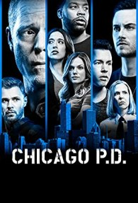 Chicago PD Season 08 | Episode 01-13