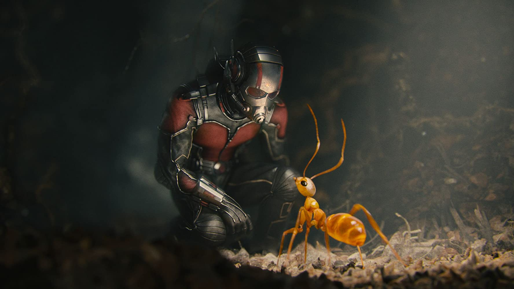 Ant-Man (2015) / IMDB.com