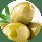 Olea Europaea Leaf Extract