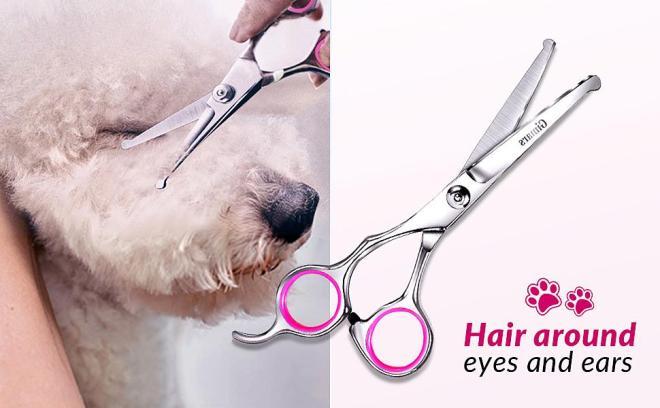 dog scissor
