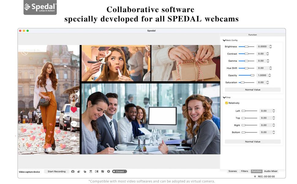Spedal webcam software