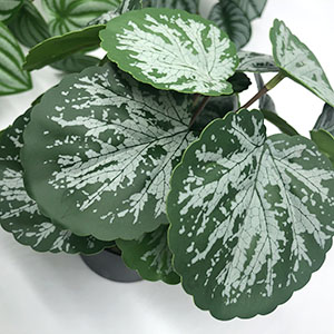 fake indoor plants
