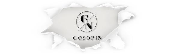 GOSOPIN Fahisonable elegant dresses