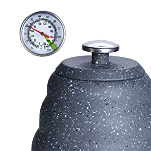 Teapot Stovetop with Precise Integrated Thermometer
