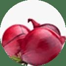 Allium Cepa Bulb Extract