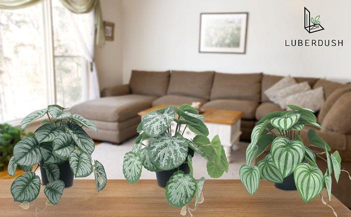 LUBERDUSH small fake plants