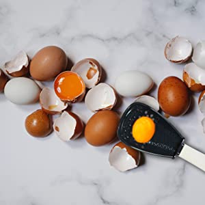 Egg Separater