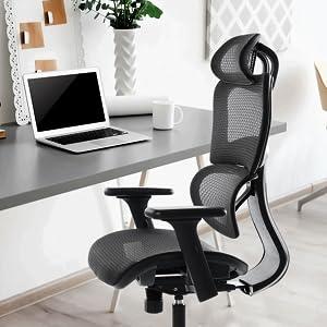 Oline Ergonomic Office Chair