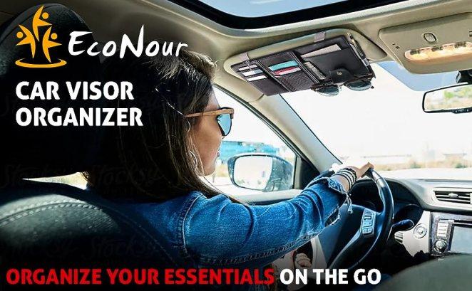 visor organizer for car