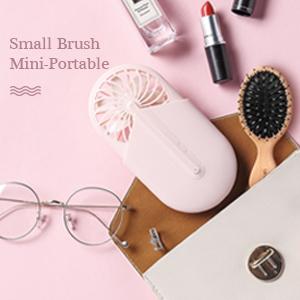 small hair brush