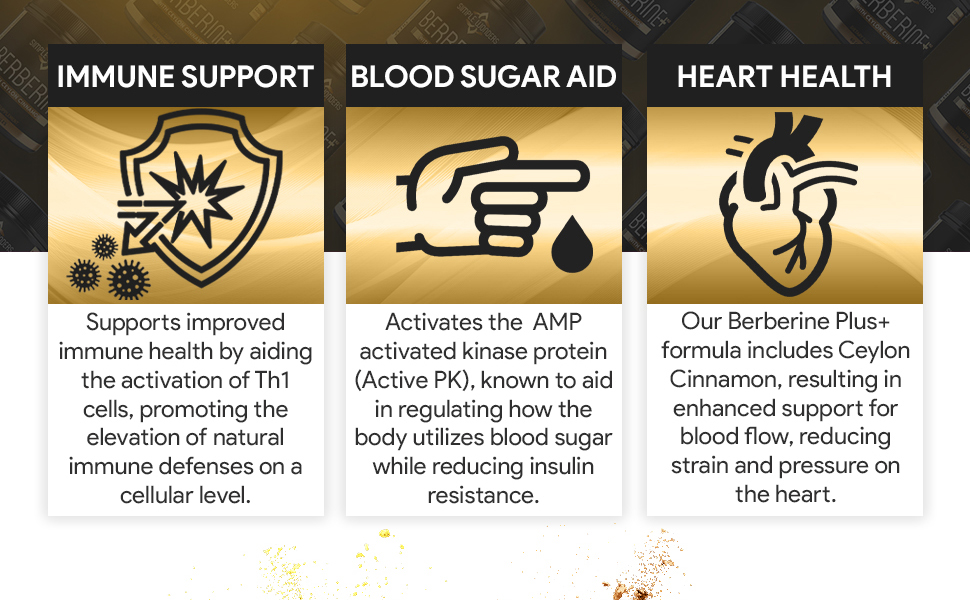 Berberine Plus 1200mg with Ceylon Cinnamon, Blood Sugar Support and Immune Health by Simple Wonders