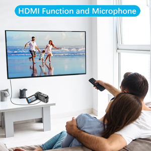 With Microphone & HDMI Output