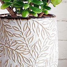 Embossed Leaves Design