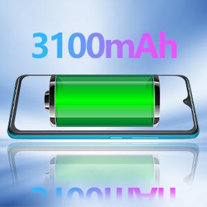 Batteria 3100mAh