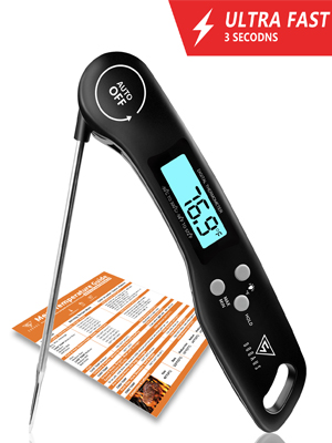 food thermometer for cooking