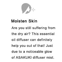 skin humidifier