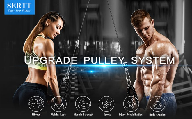 pulley system gym