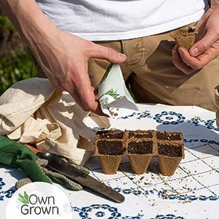 OwnGrown Kräuterset 12er Pack Küchen Kräuter Selbstanbau Saatgut Samen Garten Gewürze Basilikum