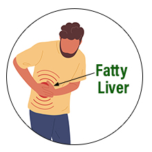 ACV HRT helps reduce the extra fat layer there by restoring functions of the liver