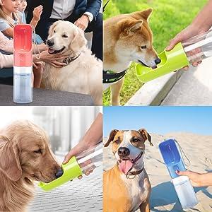 Doggy Water Bottle