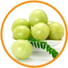 Red Onion Oil - Amla Extract
