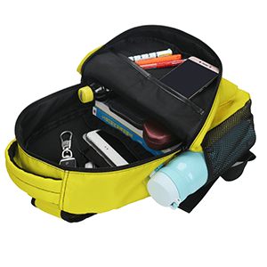 Classic Basic Lightweight Backpack for School