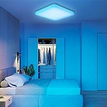 light fixtures ceiling mount