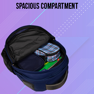 Spacious Backpack