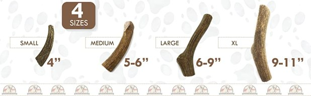 dog antler chews large, antlers for large dogs, usa elk antlers for dogs, antler dog chew large