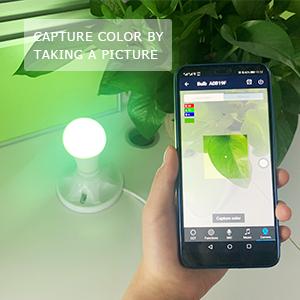 wifi smart bulbs