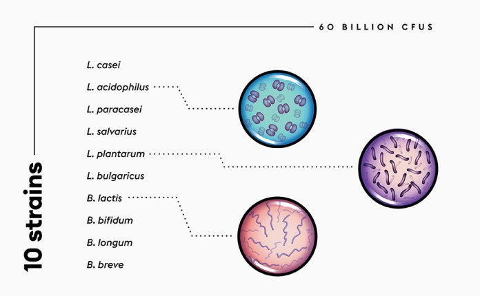 10 strains 60 billion cfu