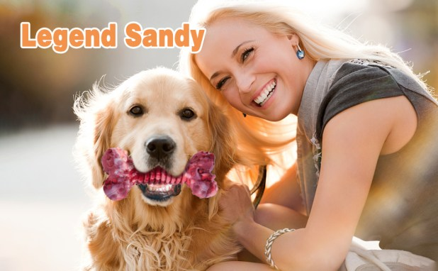 legend sandy dog toy