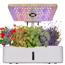 Hydroponics Growing System Kit w/LED Plant Grow Light