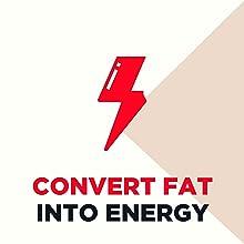 Convert Fat Into Energy