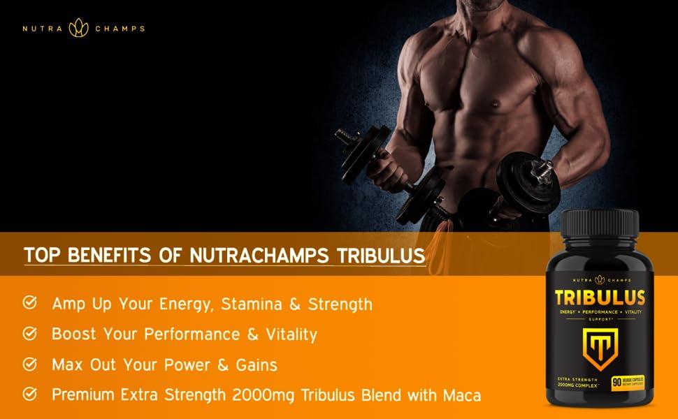 Tribulus Terrestris 2000mg Supplement - 45% Steroidal Saponins Enhanced with Maca Powder