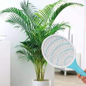 kill insects around plant