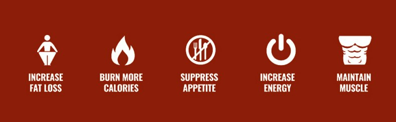 appetite suppress tablet pills