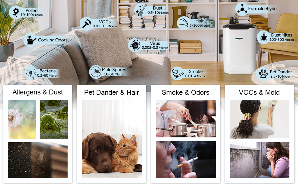 Air purifier for hair and pets