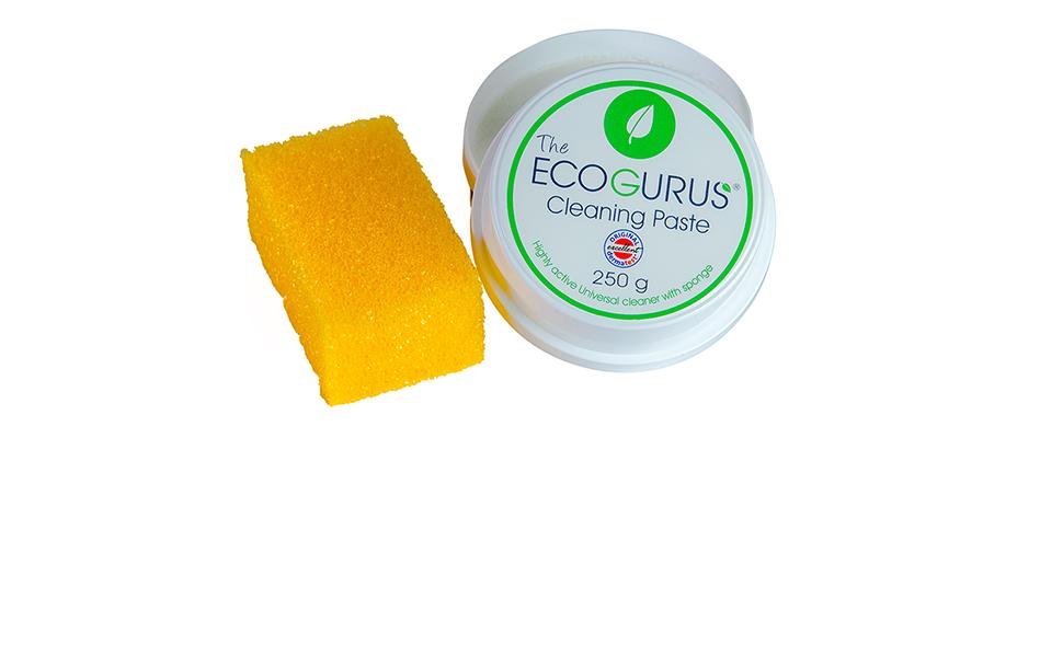 EcoGurus Image
