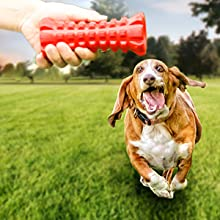 Indestructible squeaky dog toy