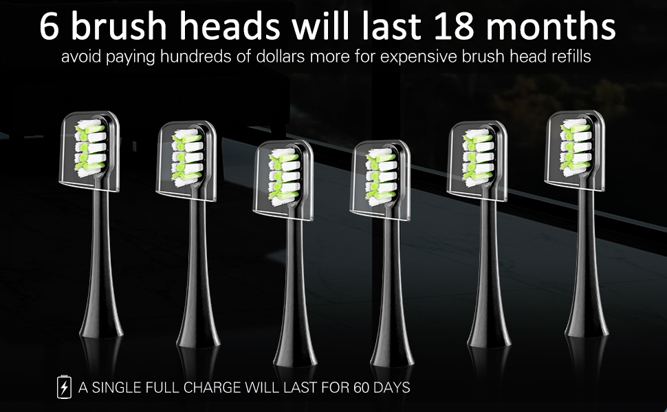 Eight electric toothbrush replacement heads