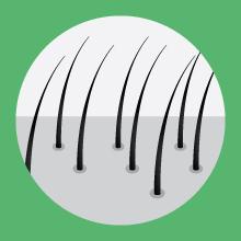 hair fall growth saw palmetto