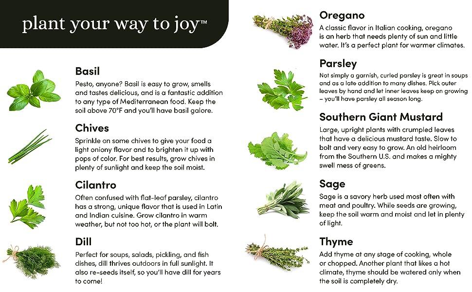 Plant your way to joy