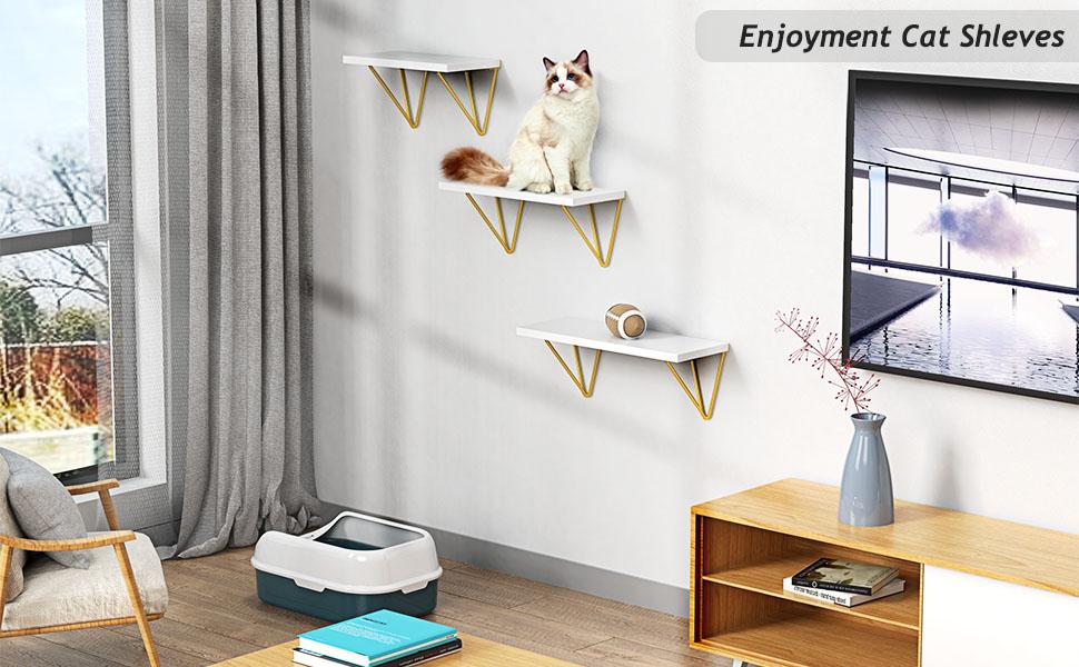 For Cat Shelf