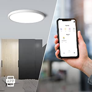 Flush Mount LED WiFi